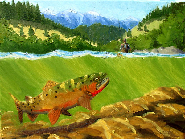 cutthroat trout chasing fly